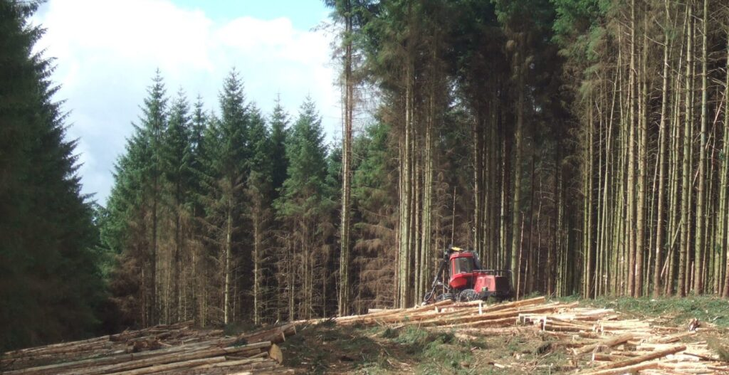 Contact-Forestry SFI ATFS (Sustainable Forestry)-ISO PROS #18
